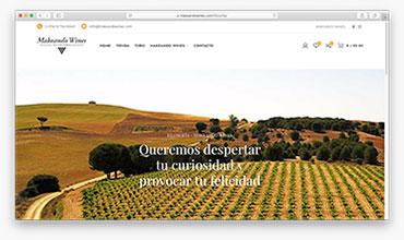 Diseño de página web corporativa y tienda online